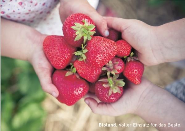 """Postkarten """"Erdbeeren"""""""