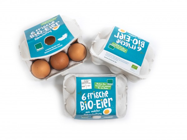 6er Eier-KVP mobile Hühnerhaltung petrol